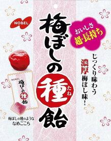 【特価】梅ぼしの種飴 30g×30袋 袋【ノーベル製菓】じっくり味わう濃厚梅ぼし味 梅干 熱中症対策にも