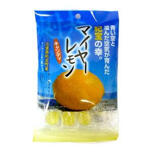 マイヤーレモンキャンディ 100g×10袋 松屋製菓 三重県紀宝町産 熱中症対策