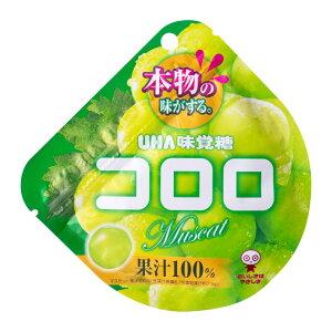 【卸価格】コロロ マスカット 48g×6袋入り1BOX【UHA味覚糖】果実のような新食感グミ 中国・タオバオでも人気急上昇!