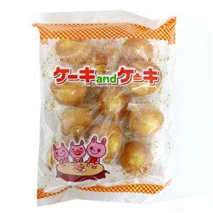 【特価】丸三玉木屋 ケーキandケーキ 個装12個×12袋 半生菓子 焼き菓子