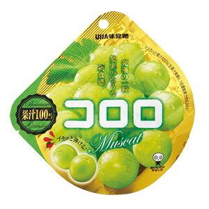 【卸価格】コロロ マスカット 40g×6袋入り1BOX【UHA味覚糖】果実のような新食感グミ 中国・タオバオでも人気急上昇!