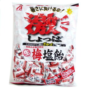 【業務用】1キロ 激しょっぱ 生梅塩飴 桃太郎製菓 1kg個装タイプ 熱中症対策に