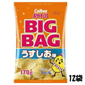 【特価】カルビー ポテトチップス BIGBAG うすしお味 170g×12袋 卸販売 大人買い【卸価格】