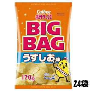 【特価】カルビー ポテトチップス BIGBAG うすしお味 170g×24袋 卸販売 大人買い【卸価格】