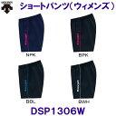 Dsp1306w 1
