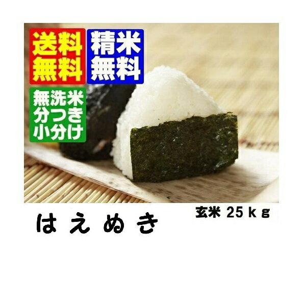 新米30年産 山形県産 はえぬき玄米25kg【地域限定送料無料】