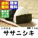 28年産 ササニシキ玄米3kg【送料無料】【精米方法自由:分づき米(胚芽米)・無洗米・白米・玄米】