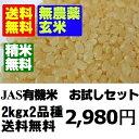 【無農薬玄米】28年産米 お試し玄米セット2kgx2 【無農薬米】【マクロビオティック】【送料無料】