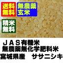 【無農薬玄米】28年産宮城ササニシキ玄米10kg(5kgx2)【無農薬 玄米】【無農薬米】【マクロビオティック】【送料無料】【胚芽米】