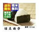 新米1年産山形県産はえぬき玄米10kg【地域限定送料無料】