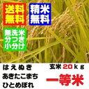 精米・送料無料28年産山形の検査一等 米 玄米20kgあきたこまち ひとめぼれ はえぬき