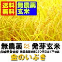 【無農薬 らくらく発芽玄米】新米 令和1年産 宮城県産金のいぶき 2kgx4袋 【無洗米の玄米】【北海道〜近畿地方の…