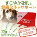 CRDog (シーアールドッグ)180ml(6ml/包×30包入り)【ペット/犬/ドッグフード/サプリメント/dog/supplement】[ シーア…