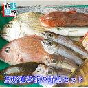 三重県産 天然 季節の鮮魚セット 熊野灘 熊野 魚セット 下処理OK 3枚卸しOK