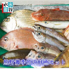 お客様評価4.8以上!!三重県産 天然 季節の鮮魚セット 熊野灘 熊野 魚セット 下処理OK 3枚卸しOK