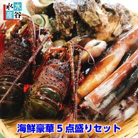 ランキング1位獲得商品 海鮮バーベキューセット バーベキュー 海鮮 セット 福袋 海鮮豪華5点盛りセット 海鮮BBQ お吸い物 鉄板 ホイル焼き 送料無料