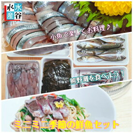 小魚で楽しくお料理♪熊野灘を食べよう!ミニミニ季節の鮮魚セット  天然魚 同梱オススメ 地魚 三重県産