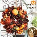 ハロウィン パーティ 飾り付け オレンジ色のカボチャや木の実がいっぱい 秋冬 パンプキン ミニ リース 自然 ナチュラル メッセージ対応 プレゼント 母 女性 メッセージ対応