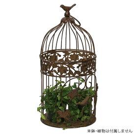 鳥かご / アンティークバードケージブラウンM AAB14-M20 アイアン【取り寄せ商品】 大同クラフト