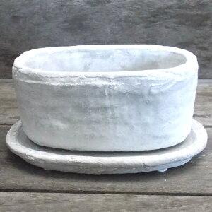 横長型植木鉢 / ロゼッタオーヴァル白L CX2001LWh【取り寄せ商品】 ミュールミル セメント 穴有 皿付