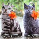 ネコ ポーチ 猫 ポシェット 全2デザイン 【 猫 雑貨 ねこ グッズ プレゼント ネコ かわいい スマホ 小物入れ 手提げ …