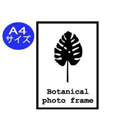 ウォールステッカー おしゃれ モノトーン フレーム ステッカー メール便 送料無料 ボタニカルフォトフレーム Mサイズ A4サイズ ハワイアン キッチン トイレ  botanical photo frame ナチュラル 模様 四角い 飾り