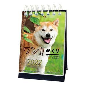 卓上 ワン めくり 日めくり カレンダー 2022年 いぬ ドッグ APJ かわいい 動物 写真 インテリア 令和4年 暦 メール便可 マシュマロポップ