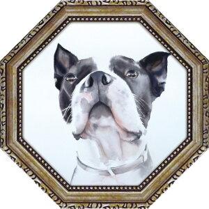 八角 ミニゲル アートフレーム バード ウォッチング エイミー デル バレ 動物画 AD-02551 19.5x19.5cm 犬 ギフト 額付き ポスターインテリア 取寄品 マシュマロポップ