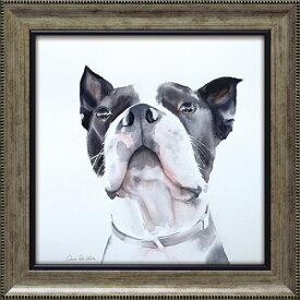 バード ウォッチング AD-06001 エイミー デル バレ 動物画 38x38cm ギフト 絵画 犬 額付き ポスターインテリア 取寄品 マシュマロポップ