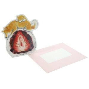 バースデーカード グリーティングカード しばいぬとおやつ いちご大福 アクティブコーポレーション 封筒付き 誕生日おめでとう メール便可 マシュマロポップ