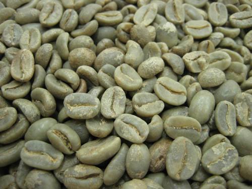コーヒー生豆ペルー オーガニック(有機栽培) 1kg【】