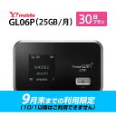 (9月末までの利用限定) WiFi レンタル 30日 3,800円 往復送料無料 1ヶ月 Y!mobile LTE GL06P インターネット ポケット…