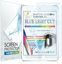 【スーパーSALE最大半額+先着15%OFFクーポン】iPad 10.2 フィルム ブルーライトカット 【透明感があるブルーライト 低減】【 日本製 】保護フィルム IPD102BBLC