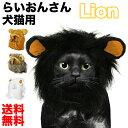 ペット用 被り物 らいおんさん 送料無料 ライオン 鬣 たてがみ 防止 猫 犬 コスプレ コスチューム 仮装 ウィッグ 帽子 被り物