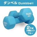 【送料無料】ダンベル2.0kg 2個セットエクササイズフィットネスダイエットストレッチ鉄アレイ【REV】[k]ダンベルセッ…