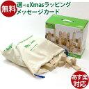 木のおもちゃ 積み木 セレクタ社 SELECTA BLOCKS・グランドセット おうち時間 クリスマス プレゼント 子供