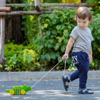【木のおもちゃ】【木製玩具知育玩具出産祝いプルトイ】プラントイダンシングアリゲーター誕生日1歳【p】【ポイント15倍】