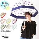 ビニール傘 おしゃれ 65cm 楽天 長傘 大きめ 大きい 傘 レディース 丈夫 ブランド wpc 雨傘 ドーム型 グラスファイバ…