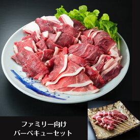 ファミリー向け猪肉バーベキューセット 1.3kg (スライス4袋・串2袋)長崎県産天然イノシシ