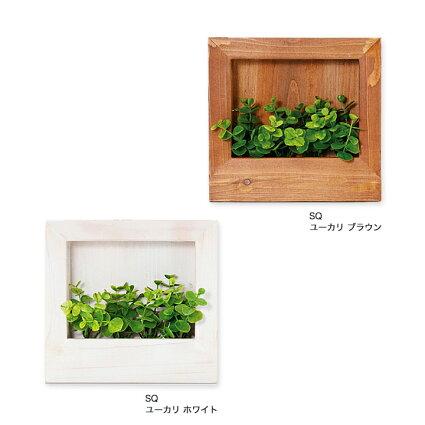 【ポイント10倍】光触媒グリーンウッドフレーム・ミニサイズの卓上仕様♪CT触媒観葉植物人工水やり不要害虫アブラムシ空気清浄消臭抗菌小さい玄関トイレ棚インテリアグリーンイミテーショングリーン小さい