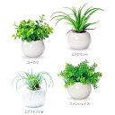 インテリアグリーン ラウンドポット光触媒加工で消臭・除菌・抗菌・防汚・空気清浄効果のある人工植物、フェイクグリ…