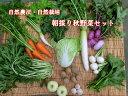自然農法プラチナ・自然栽培 野菜セット(秋季) Mサイズ 普段使いに(6kg以上)