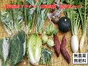 自然農法プラチナ・自然栽培 野菜セット(秋季) 普段使いに(約7kg) 無農薬栽培 オーガニック 農薬不使用