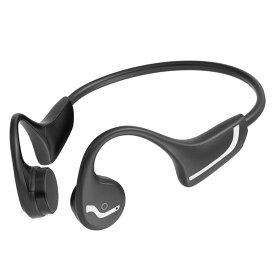 radius Lightning直結 Inner ear headphones カナル型インナーイヤホン シルバー