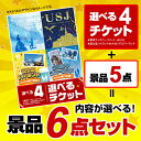 【エントリーで+ポイント5倍】【選べる景品 セット6点】選べる4 (USJ ディズニー ナガスパ 富士急 )チケットと内容が選べる5点