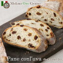 パーネコンルーバ [pane con l'uva]1個【卵不使用・卵アレルギー対応】(レーズンパン)イタリアパン専門店『モリノオー…