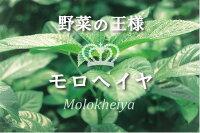 いづものモロヘイヤ100は、まさに天然のマルチサプリメント