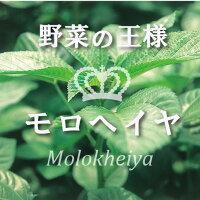 野菜の王様モロヘイヤ