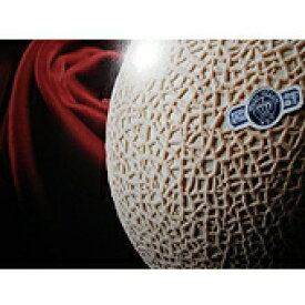 最高級クラウンマスクメロン(遠州)特選(1.5kg)×2個入り 「メロンの王様」 【smtb-kd】