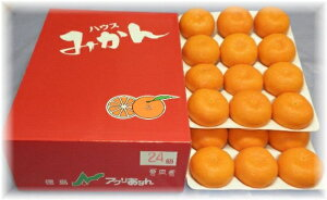 みかん アグリあなん M(24個入り) 約2.5kg徳島産 オリジナル温室栽培ハウスみかん(化粧箱入り)糖度13度以上! ふるさと物産品